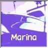 マリーナのお知らせ